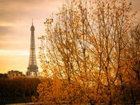 На восстановление туризма Франции потребуется 13 месяцев