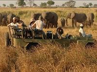 Организованный туризм в стране достиг отметки в 20%