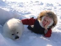 Туристов приглашают в гости к новорожденным тюленям